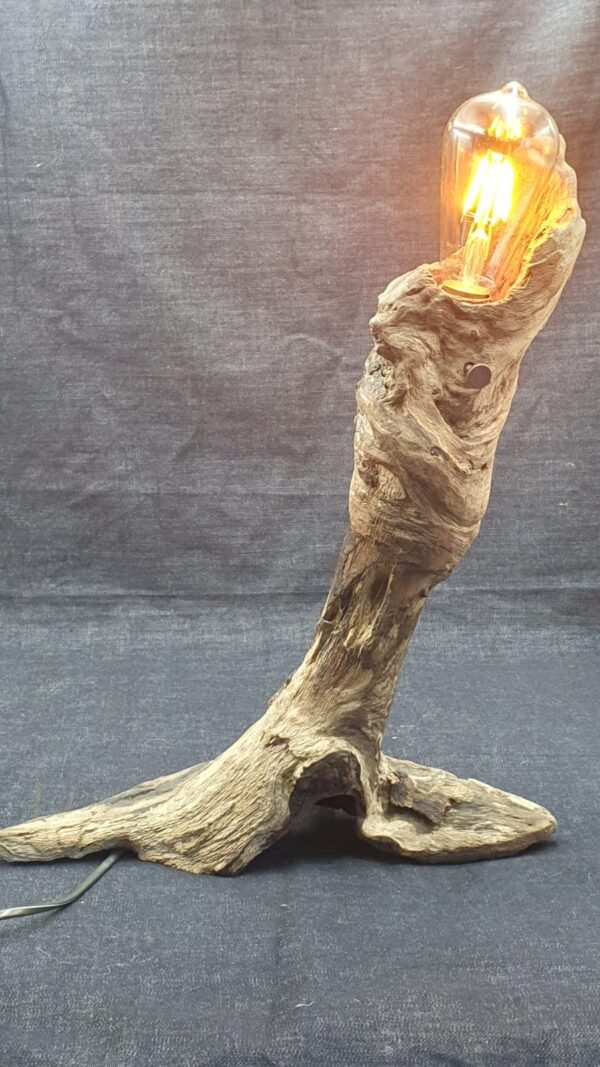 1 Torch by Woodby
