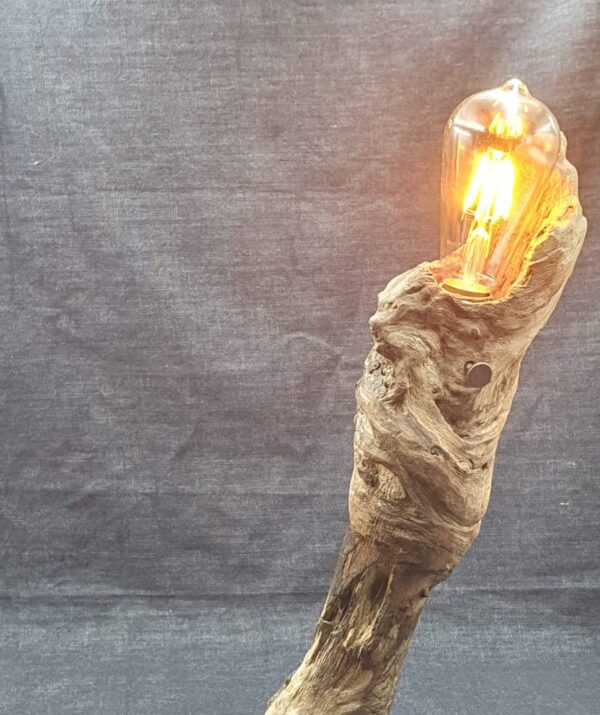 1 Torch by Woodby copy 2